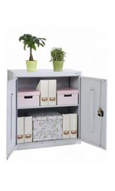 Металлические архивные шкафы ALR-8896 купить недорого